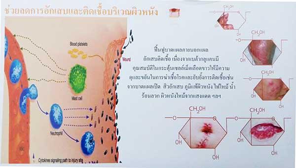 betaglucan-maho_heal lesion