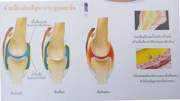 increase Synovial Fluid_betaglucan-maho