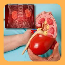 Chronic renal failure_heal maho betaglucan