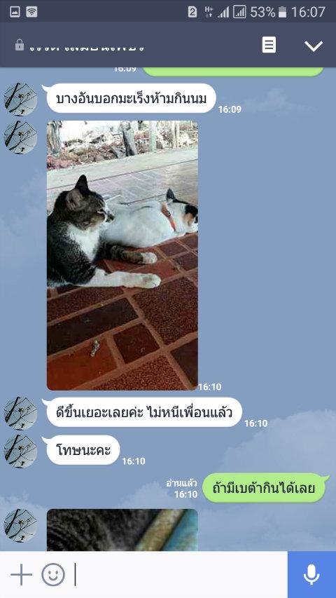 review leukemia cat10_betaglucan-maho