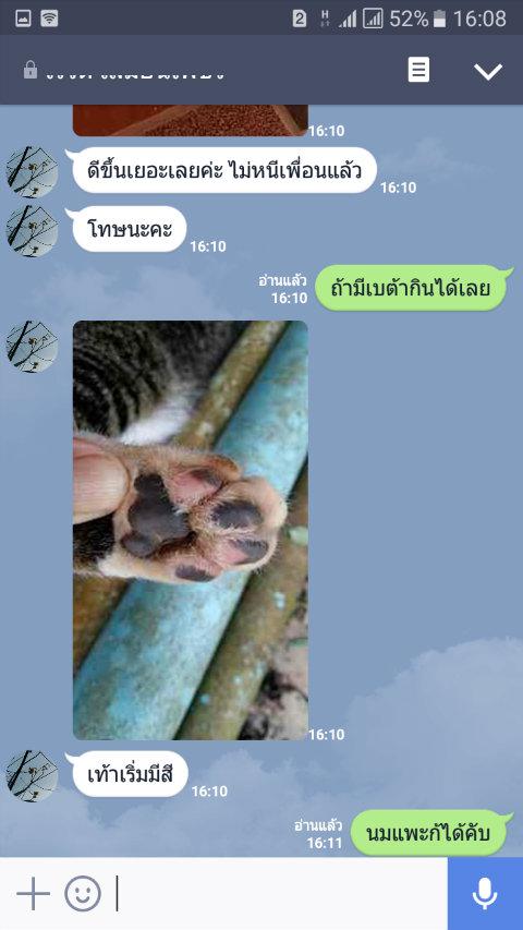 review leukemia cat11_betaglucan-maho