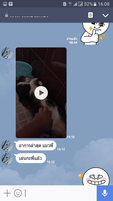 review leukemia cat6_betaglucan-maho